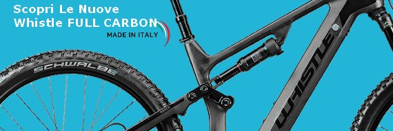 Offerte E-Bike Full Carbon Whistle